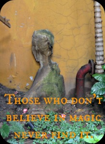 Those who don't believe in magic never find it